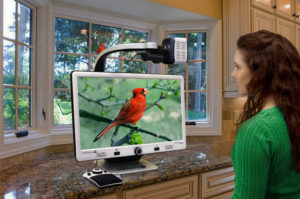 Use DaVinci Pro for Distance Viewing to look out the window to see weather, birds, visitors in yard—Don't miss any of the action