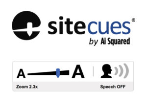 Make your website (ICT, ADA, and US Rehabilitation Act, Section 504, and Section 508) compliant, accessible AND user-friendly for everyone with Sitecues®.